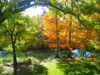 Fall at Christoval River Retreat